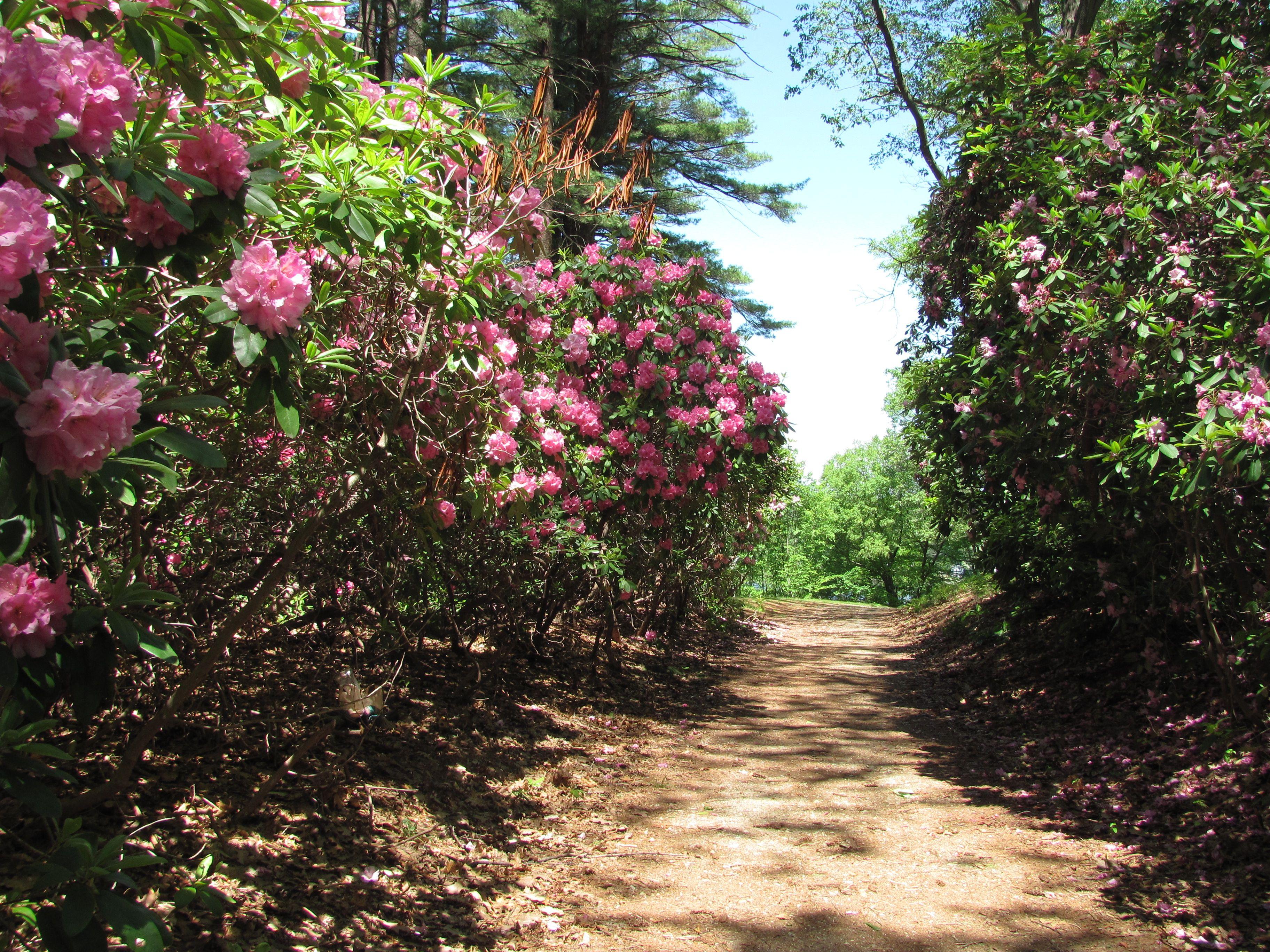 I Love Maudsley State Park In Newburyport Ma With It S
