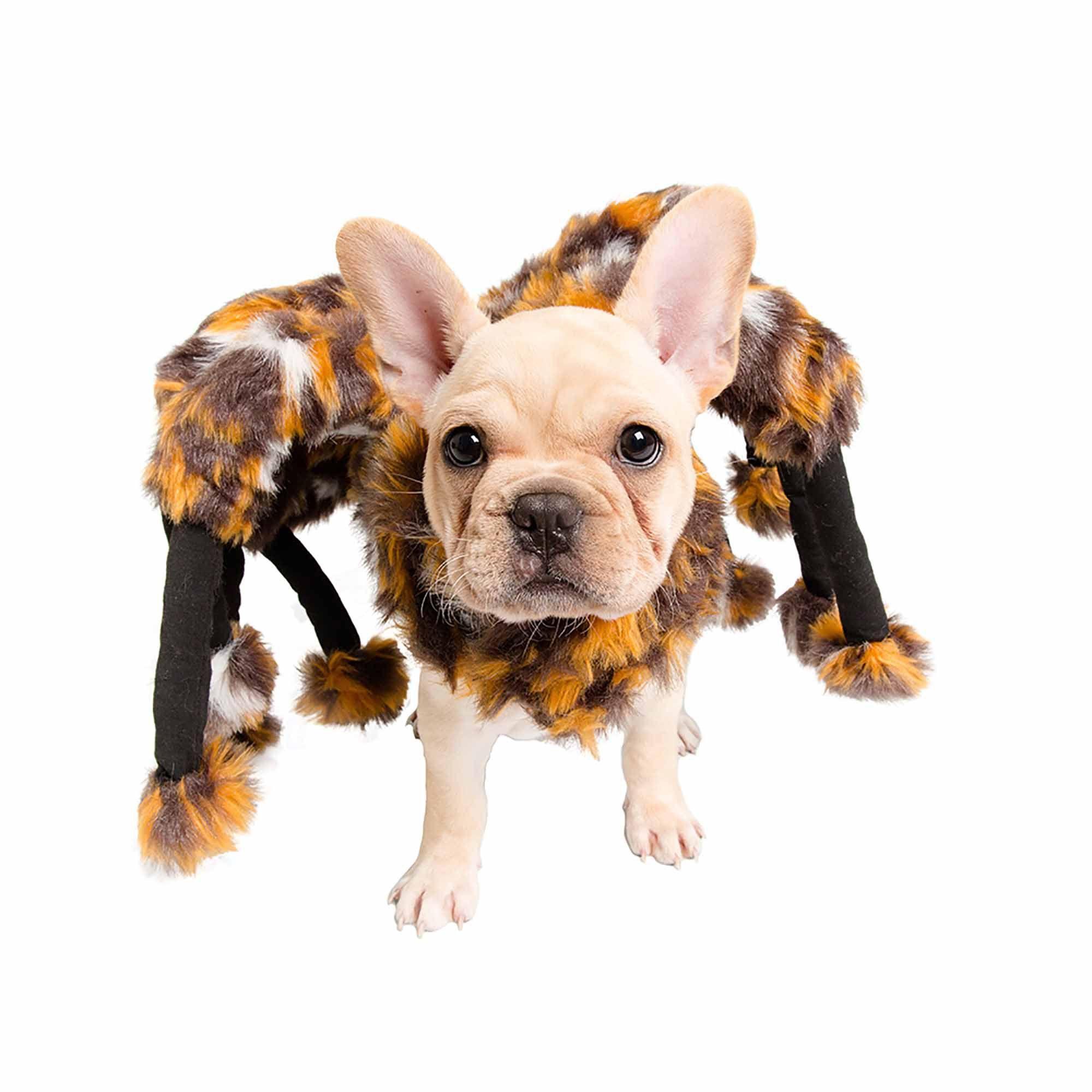 Pet Krewe Spider Costume For Pets Large Dog Spider Costume Pet