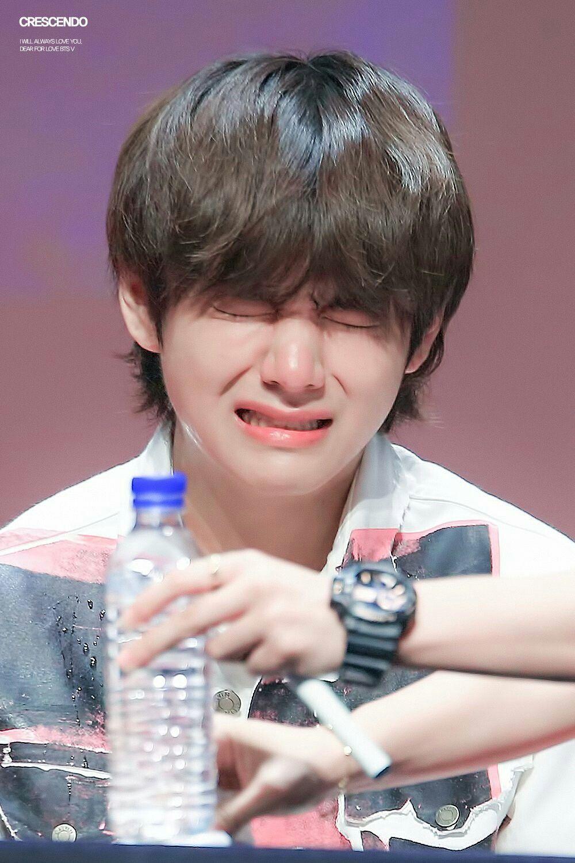Jungkook Kim Taehyung South Korea Bts Blood Sweat Tears Vkook