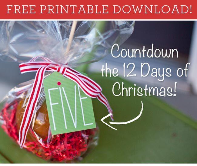 12 Days Of Christmas Craft Ideas Part - 35: Free Printable U0027The 12 Days Of Christmasu0027 Tags