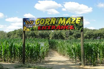 V & V Adventure Farm Adventure farm, Corn maze, Adventure