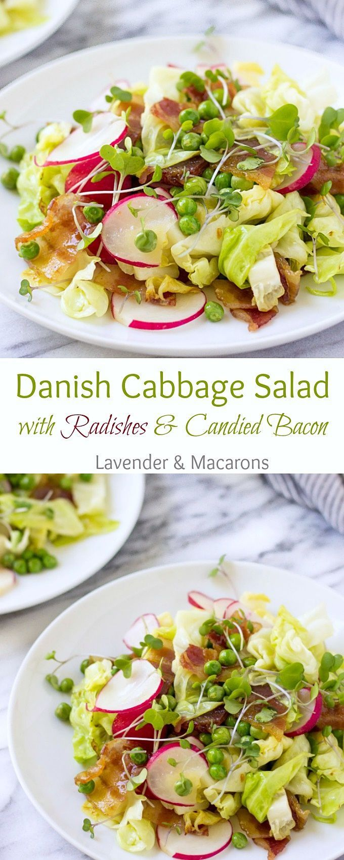 Danish Salad Cabbage Salad Scandinavian Recipe Radishes Salad Cabbage Salad Candied Bacon Easy Salad Recipes