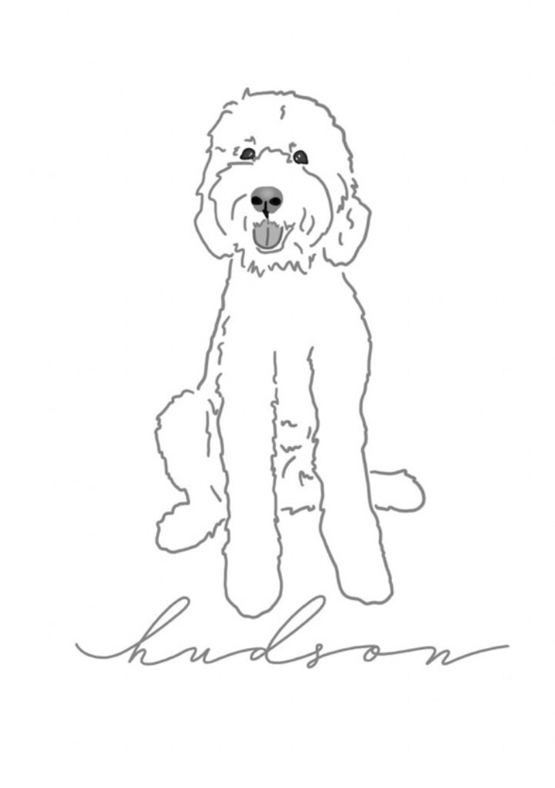 Minimalist Custom Pet Illustration With Name Dogs Cats Etc In