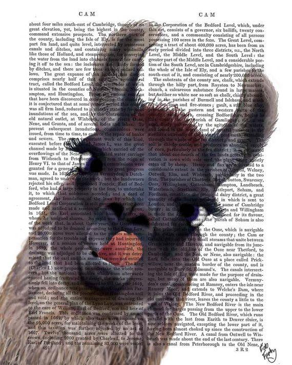 Silly Llama Print Art Print Acrylic Painting by FabFunky on Etsy, $12.00