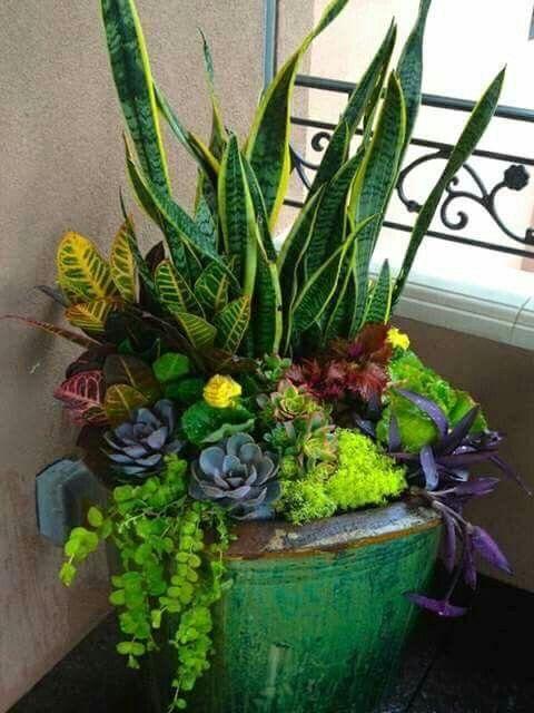 Balcony Pots