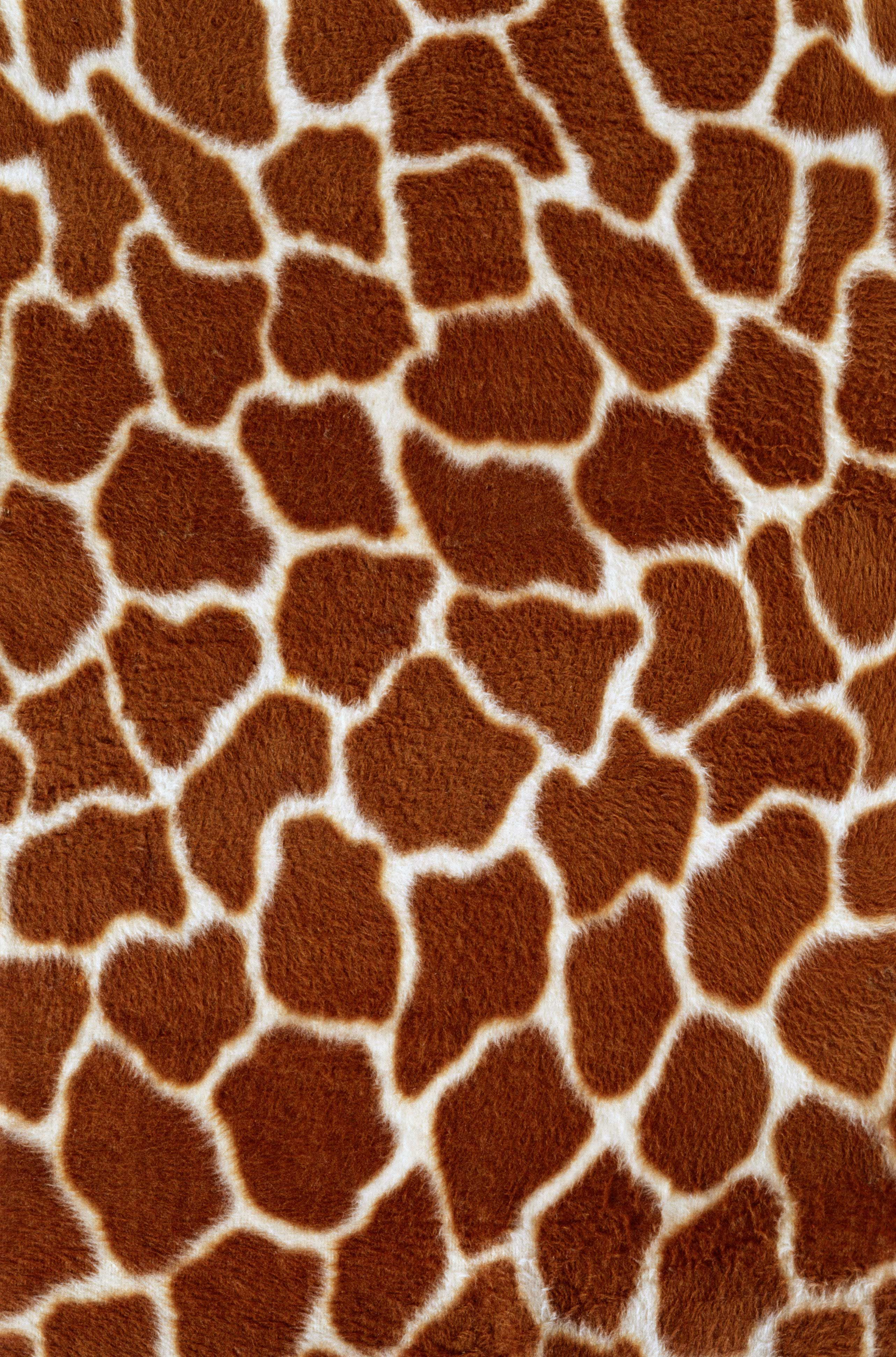 Animal Skin Texture Wallpaper Iphone Produk Animasi