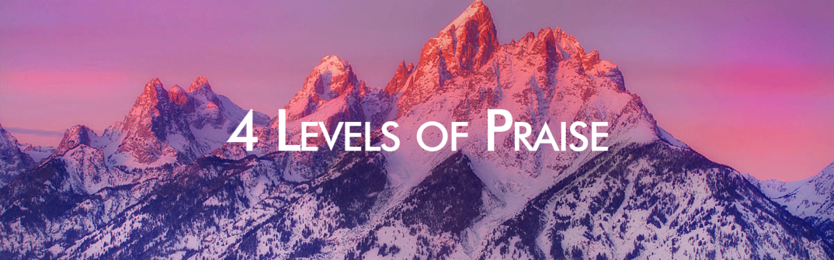 Ron Kangas on progressing in our experience through four levels of praise: We need to advance through four levels in our experience of praise. These levels are all necessary and valid. 1) Praising ...