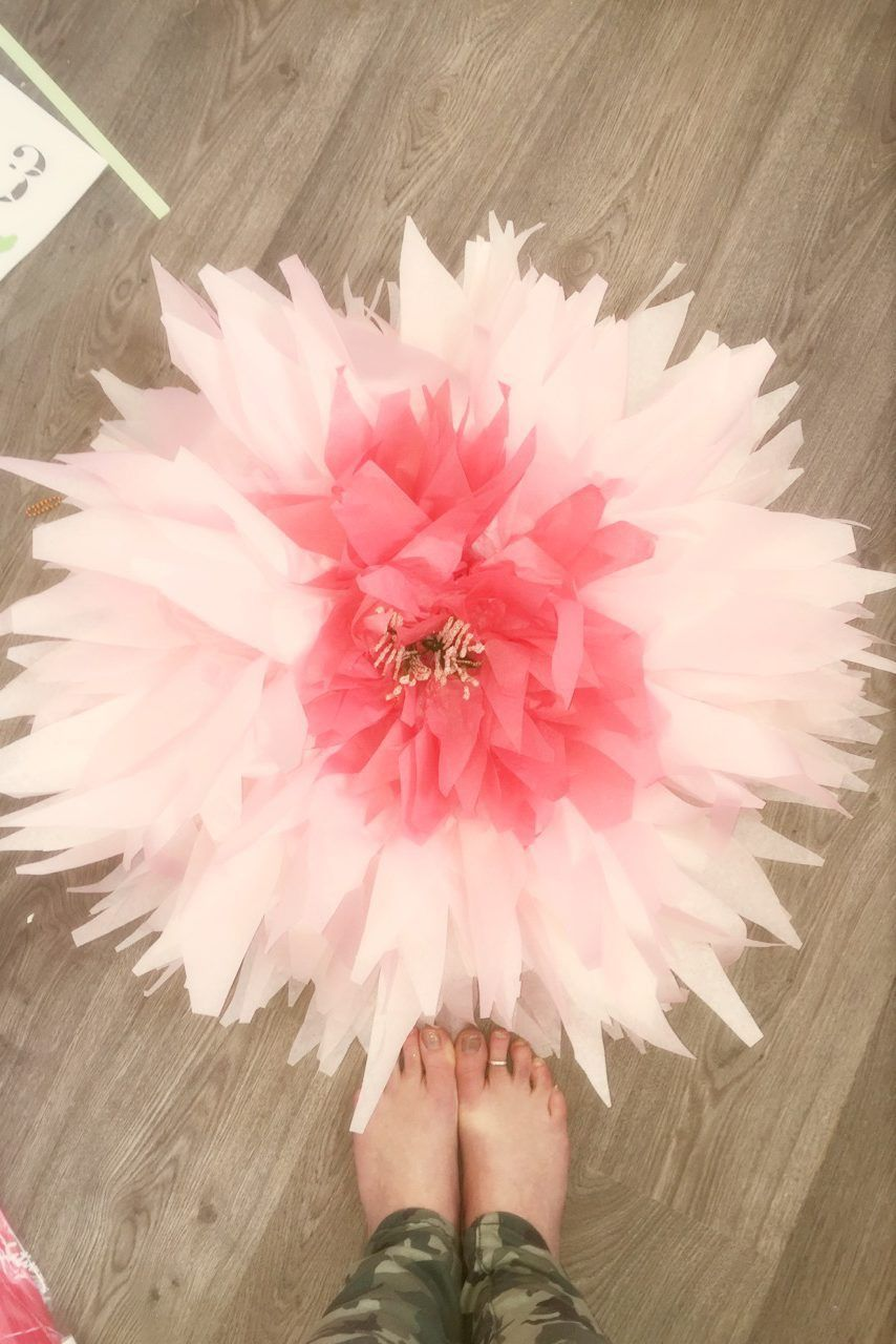 How To Make Giant Tissue Paper Flowers Paper Flowers Diy Tissue