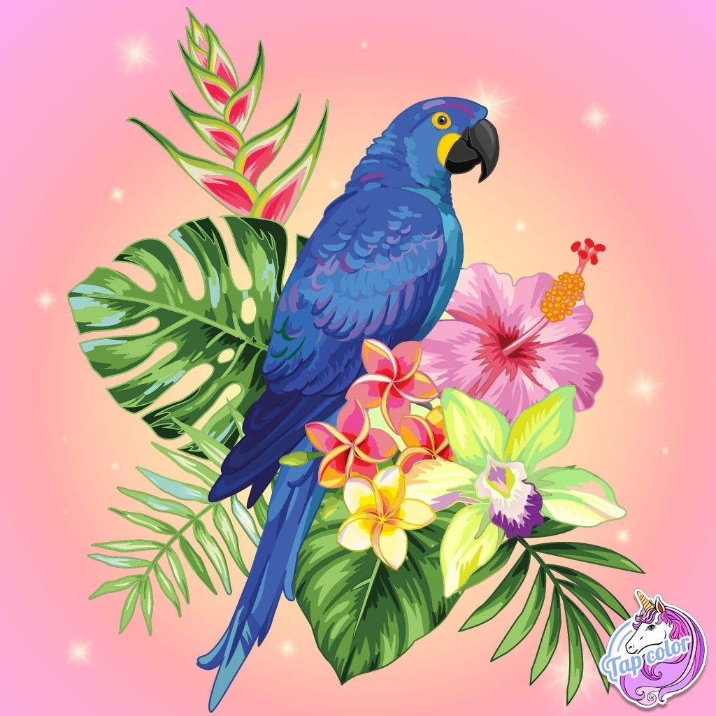 Epingle Par Lilou Sur Tap Color Coloriage