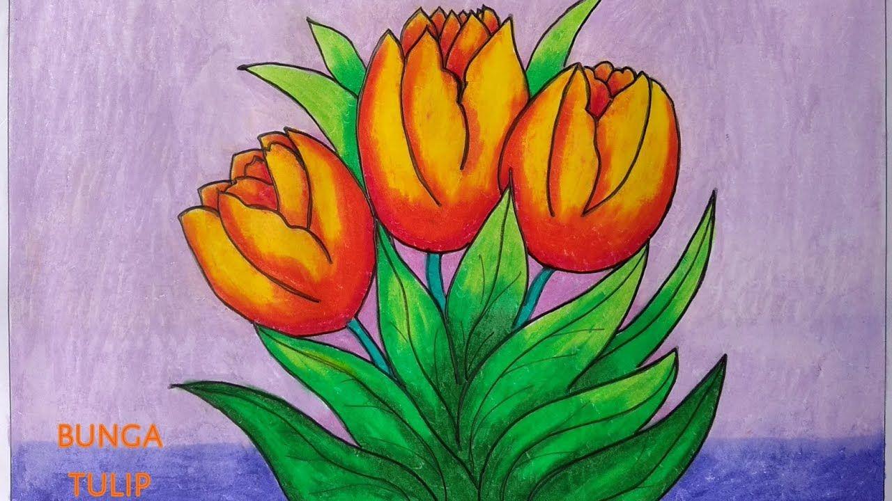 Gambar Bunga Tulip Mewarnai