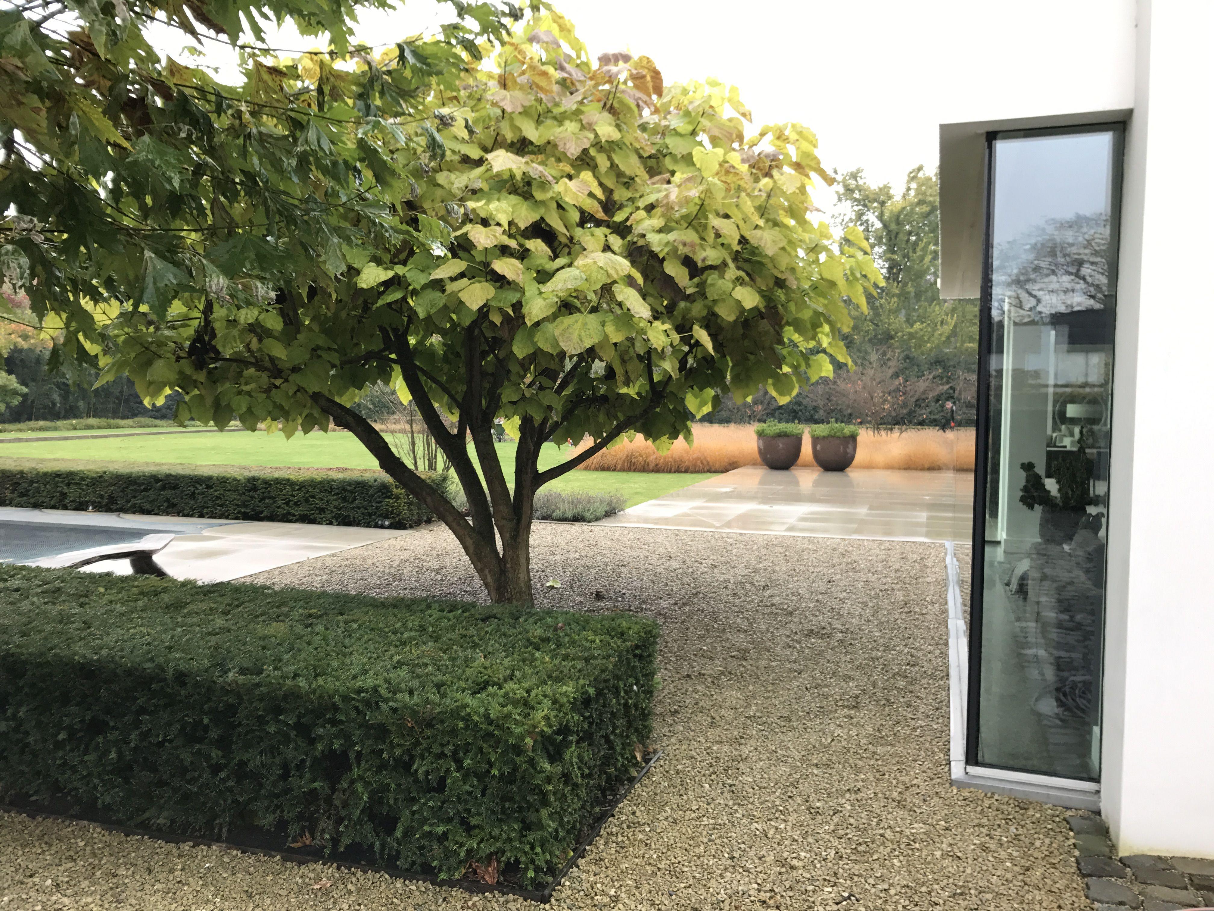 Moderne tuin met natuurlijke materialen groenseizoen