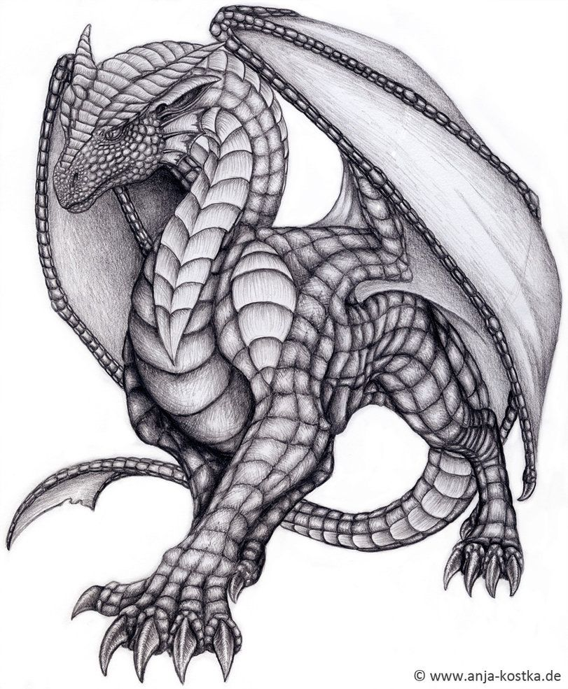 Only Cool Drawings of Dragons | Dragon Drawing by ArkaEdri ...