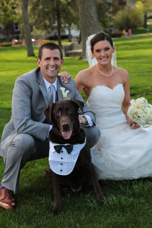 Culver, Indiana Wedding. Puppy ring Bearer. Dog tuxedo! | Our ...