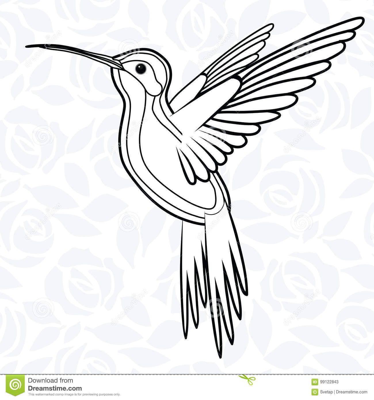 Colibri Or Hummingbirds For Logo, Icon, T-shirt, Mascot, Poster ...