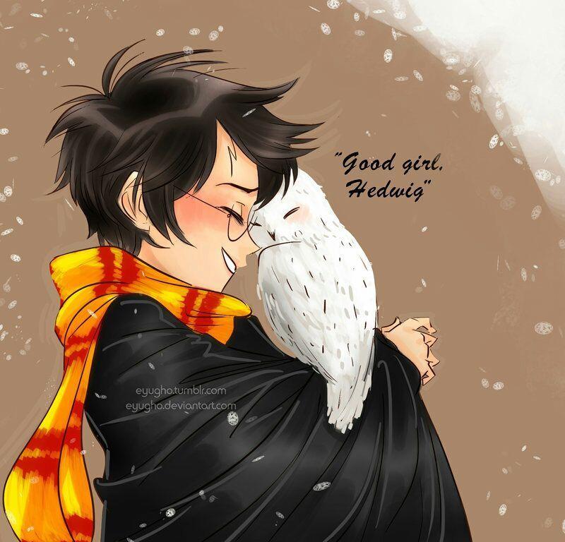Fan Art Harry Potter Harry Harry Potter Fan Art Harry James Potter Harry Potter Drawings
