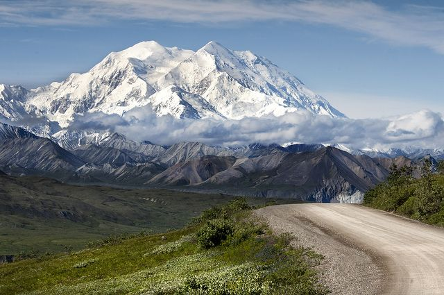 Denali National Park, Alaska. Spent a day in the park...seeing all of the wildlife in it's natural habitat was an amazing experience.