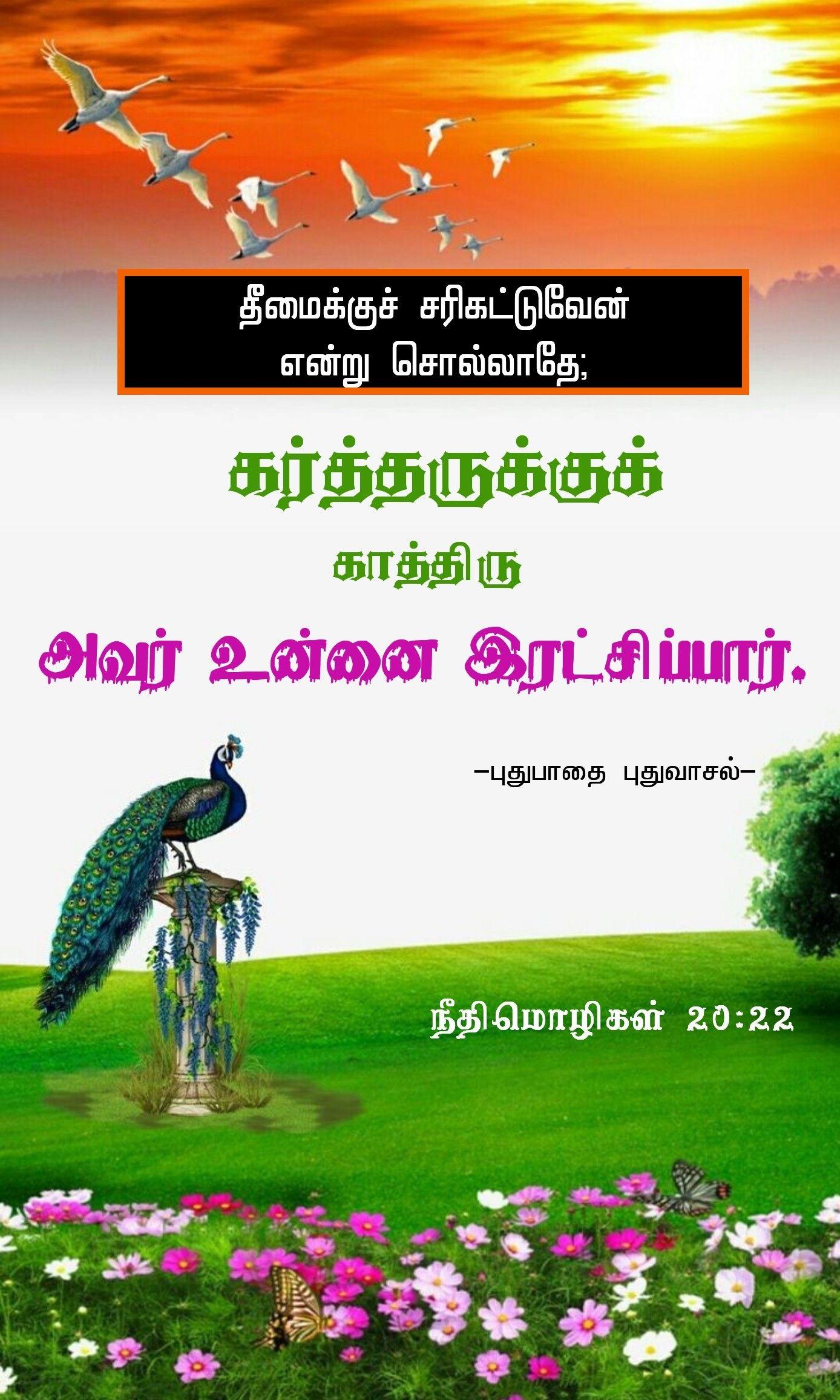 Pin by Kevinjca on Bible verse wallpaper Tamil bible