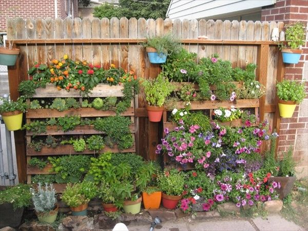 Pallet Herb Garden Ideas Shelves Pots Colorful Flowers Herbs