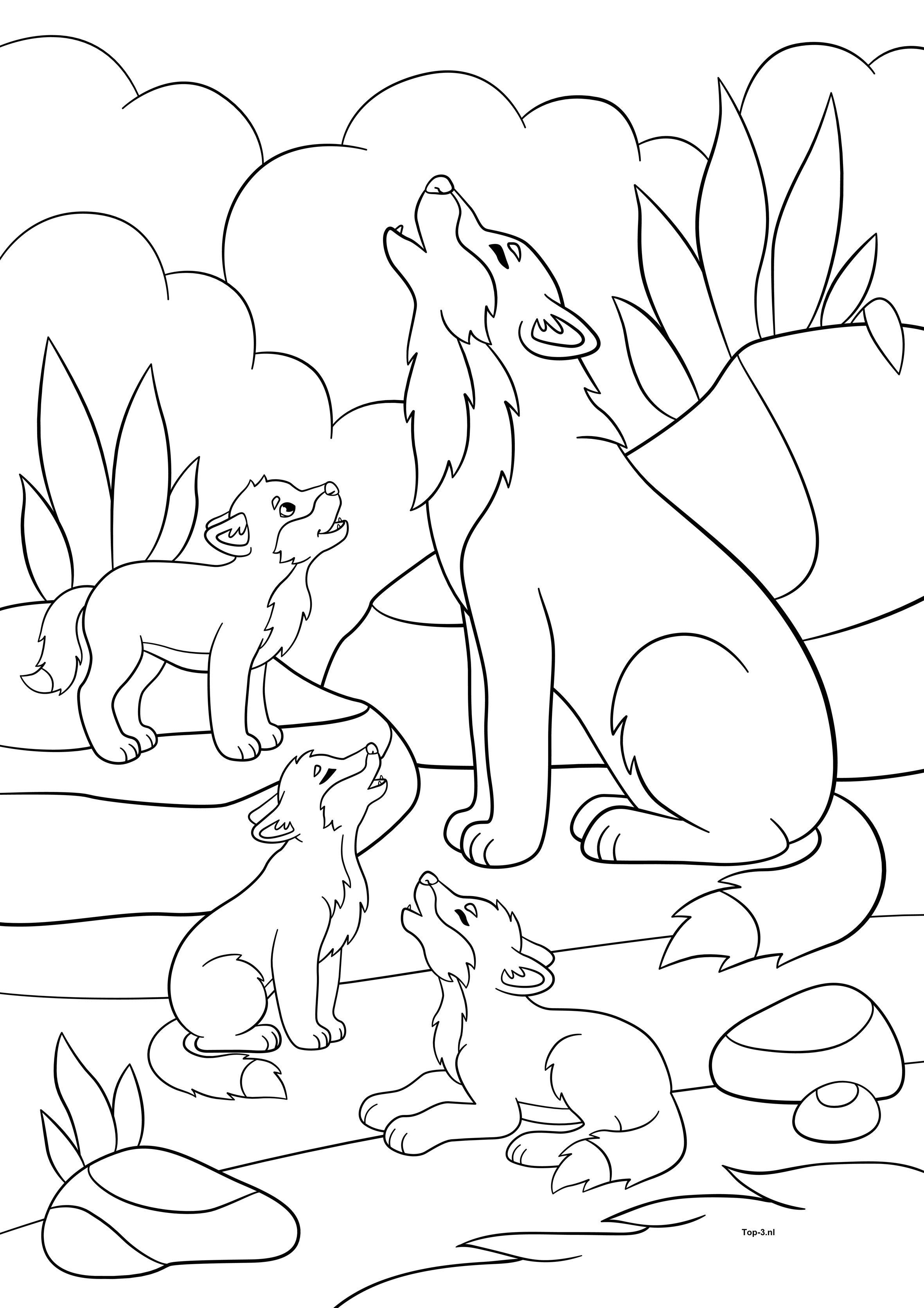 kleurplaten dieren kleurplaten wolven dieren