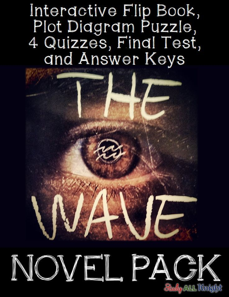 The Wave By Todd Strasser Novel Study Literature Guide Flip Book