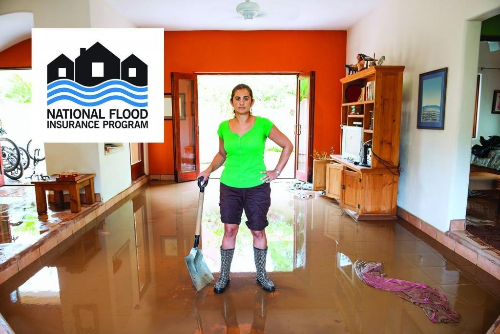 The National Flood Insurance Program FEMA.gov Flood