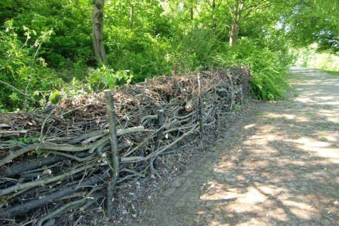 Aus Totholz Wird Neues Leben Nabu In 2020 Naturzaun Garten Bepflanzen Landschaftsgartner