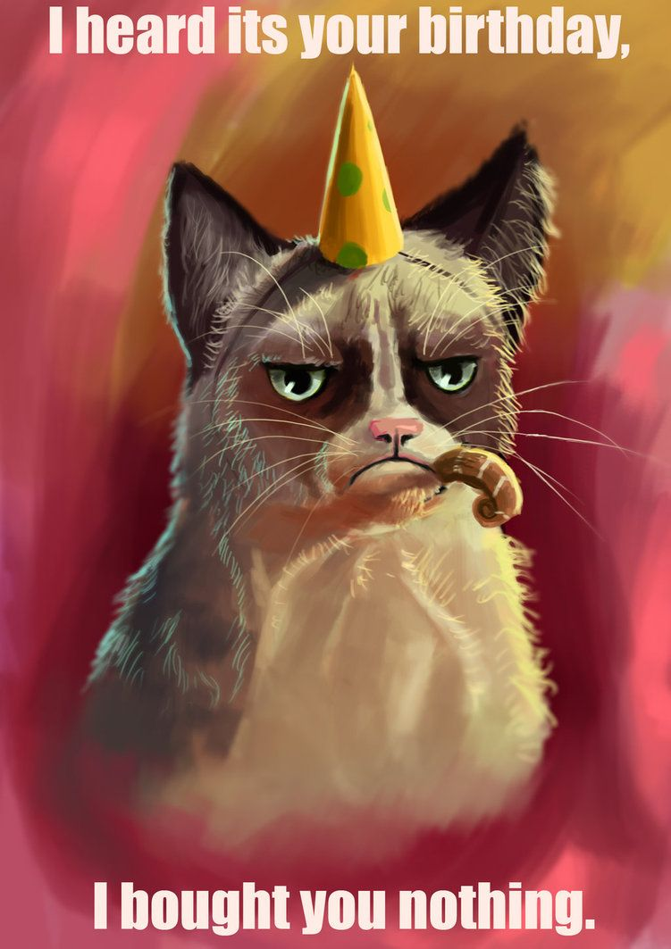 Birthday Party Cats Happy Birthday Cat Cat Birthday Birthday