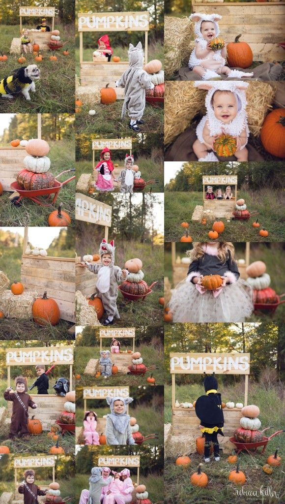 The Halloween Minis Raleigh Halloween Mini Sessions
