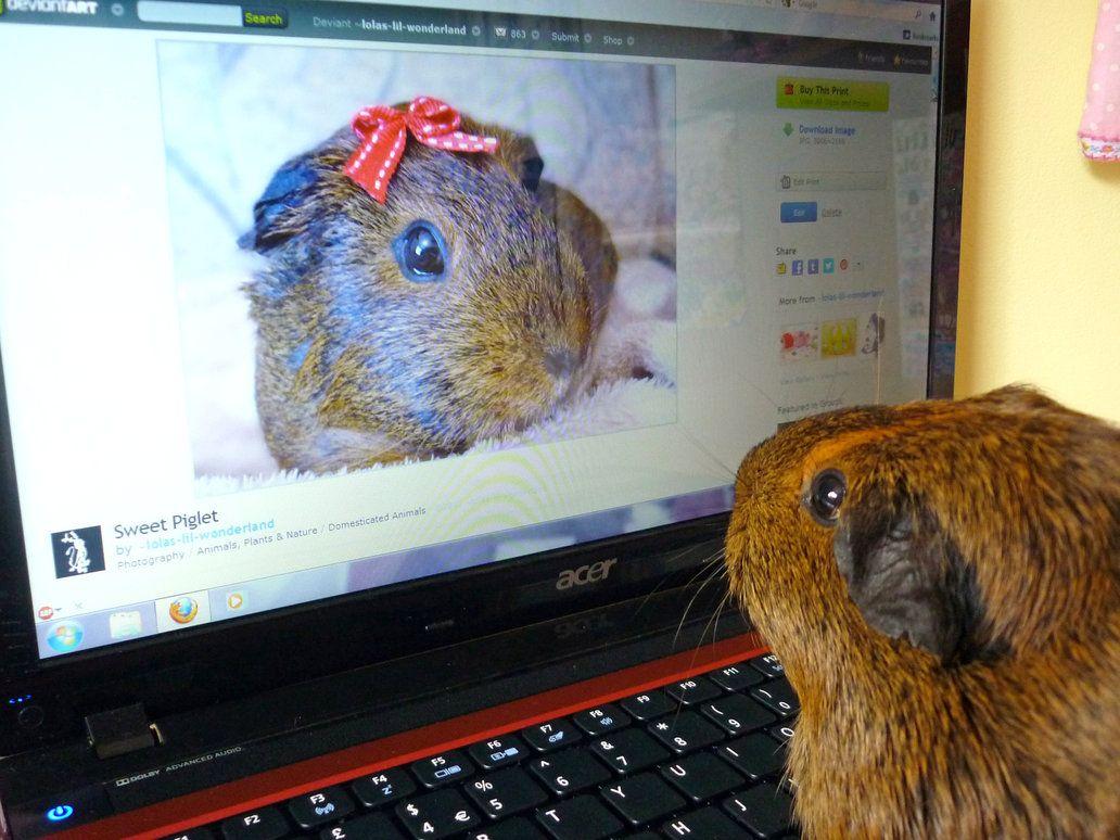 Online Dating av Susie
