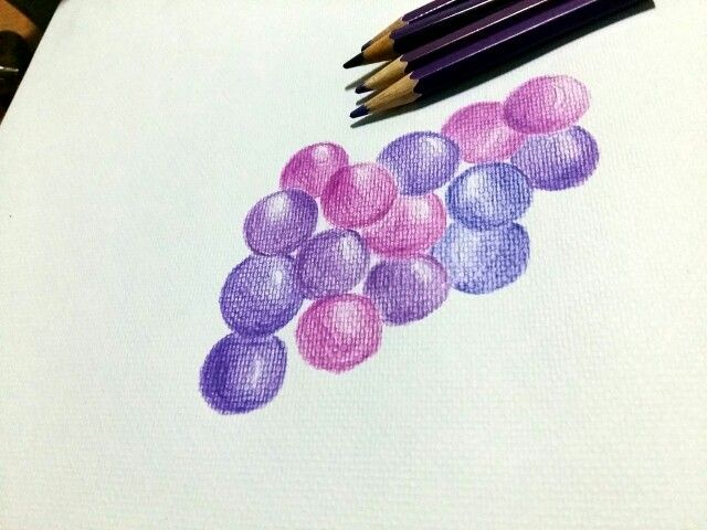 My first fruit picture # Grapes colored pencil drawing