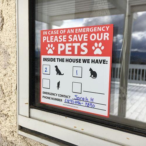 Pets inside the house emergency window sticker the pet care card pet products pinterest pet care pet products and cat