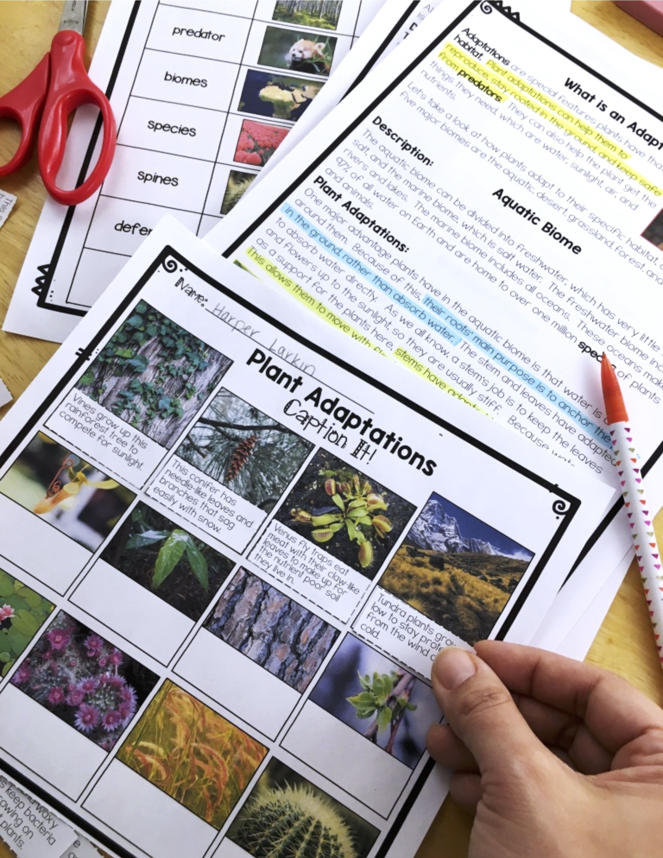 Differentiated Plant Adaptations Reading Passages