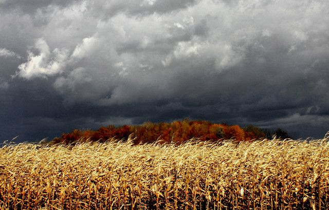 Wunder Blog Weather Underground Beautiful Nature Clouds Weather Underground