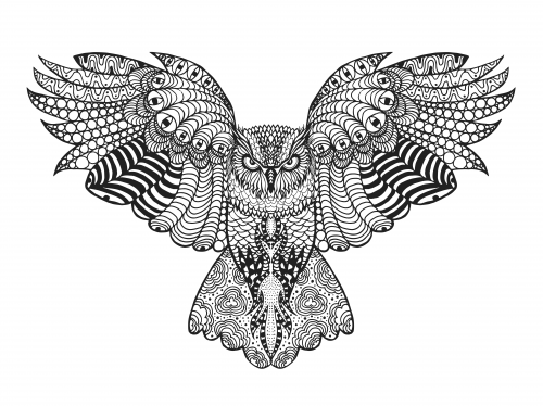 Falcon Advanced Coloring Page | Pinterest | Falcons, Adult coloring ...