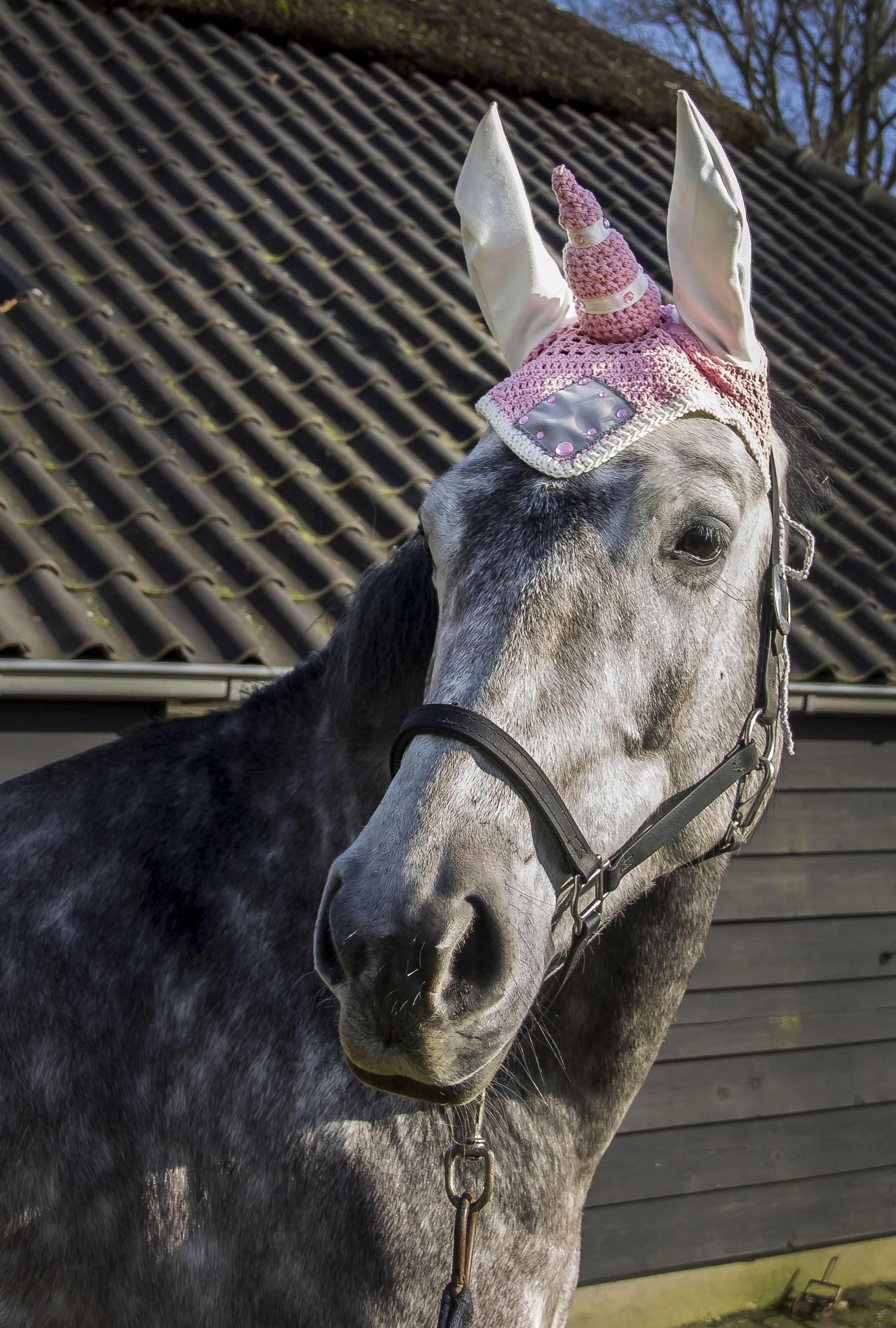Unicorn, unicorn flybonnet, unicorn horse, white unicorn, flybonnet, fly  bonnet,