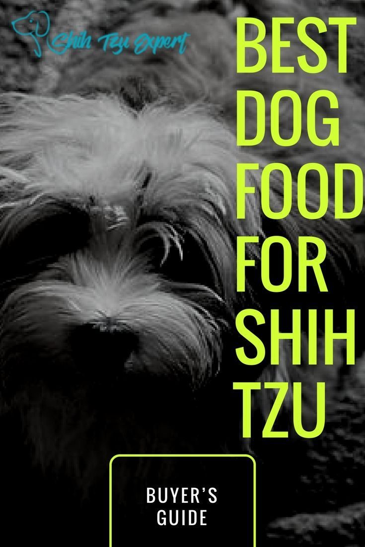 Best Dog Food For Shih Tzu Best Dog Food Dog Food
