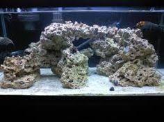 Image Result For Aquascape 3ft Tank Live Rock Marine Fish Tanks Saltwater Aquarium Setup Saltwater Aquarium Fish