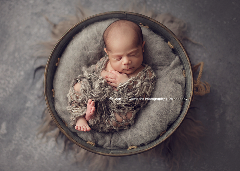 Vancouver newborn photography baby in basket fluffy new born photography grey
