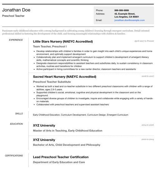 Professional Cv Format, Online Resume