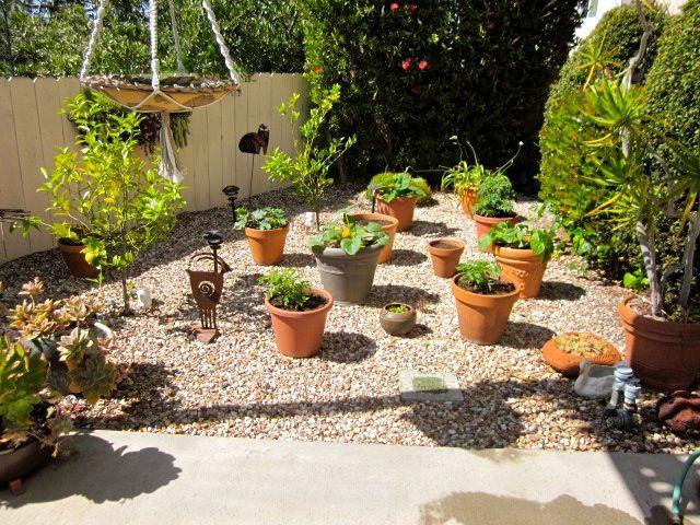 No Grass Front Yard Landscaping Ideas   no grass front ... on Small Garden Ideas No Grass  id=74588