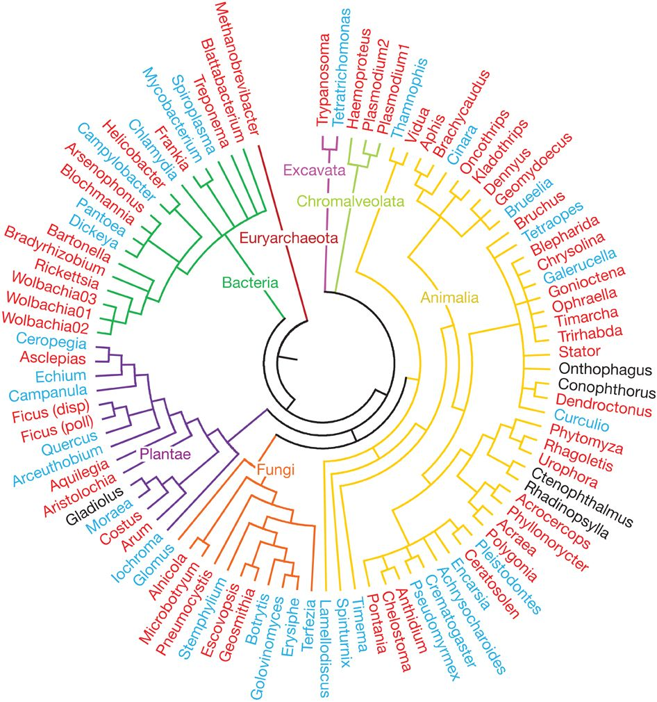 Tree of life showing ecological interactions that are ...