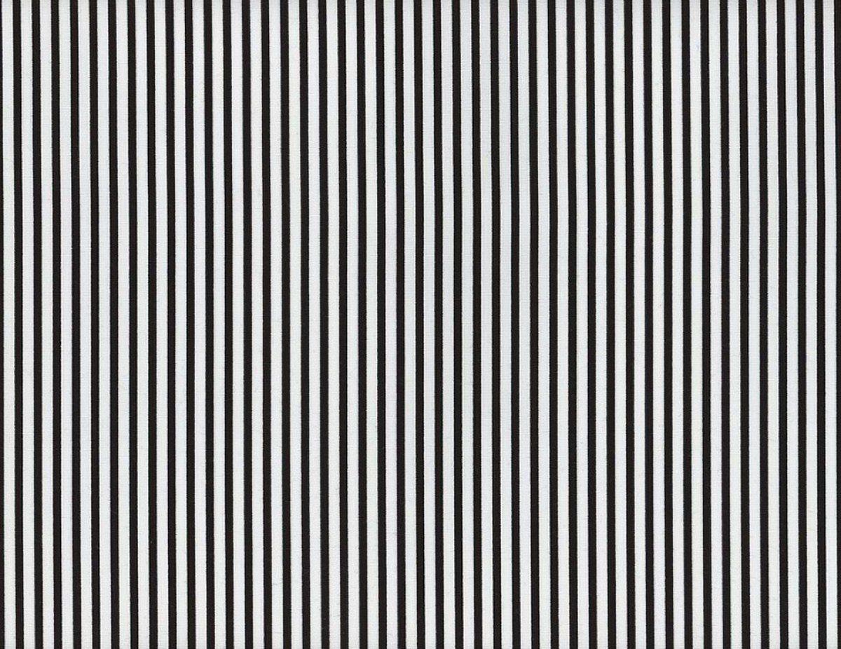 Sevenberry Petite Basics Stripe Black Candy stripe