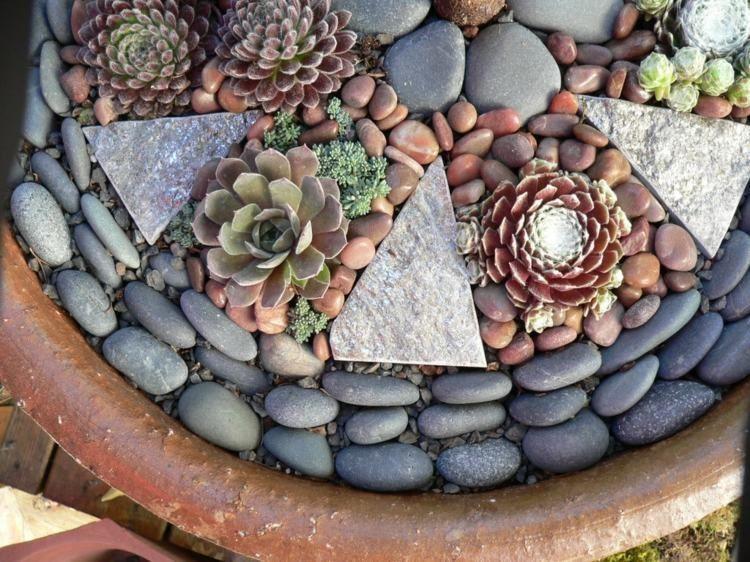 Für die Gartengestaltung Blumentöpfe mit Kies und Sukkulenten - garten mit steinen dekorieren
