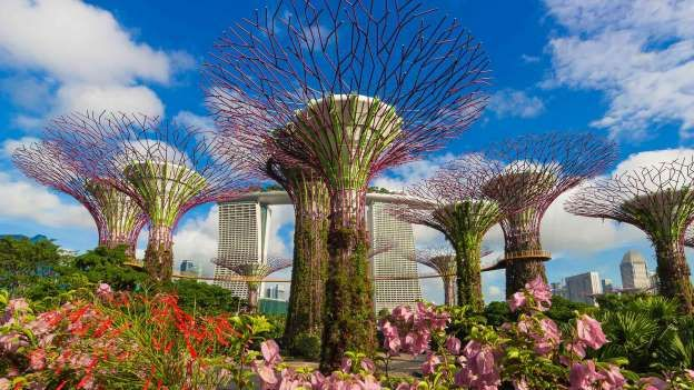 4ac0db23aa6523e5b1eca04dc86ed469 - Gardens By The Bay Singapore On Budget