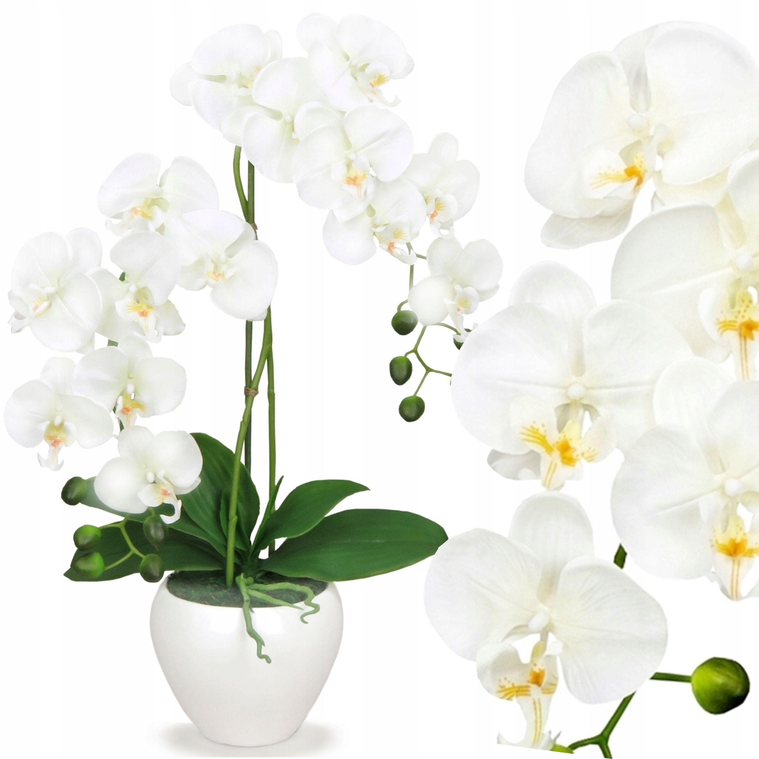 Storczyk Sztuczny Kwiaty Sztuczne Storczyki K 192 Plants Art