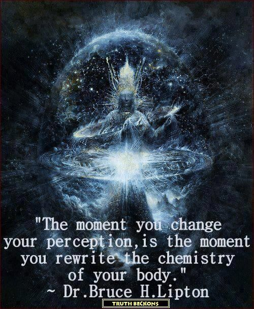 "*""The moment you change your perception is the moment you rewrite the chemistry of your body."" ~Dr. Bruce H. Lipton"
