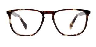 5b61efc15c Eyeglasses - Vaughan in Burnt Lemon Tortoise