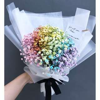 Rainbow Baby S Breath Flower Bouquet Real Flowers Fresh Flower Bouquet Colourful Bouquet Thực Vật Hoa đẹp Bo Hoa