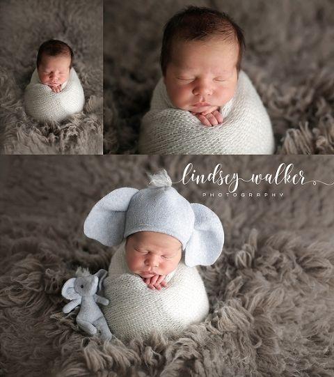Newborn potato sac pose knoxville tn photographer