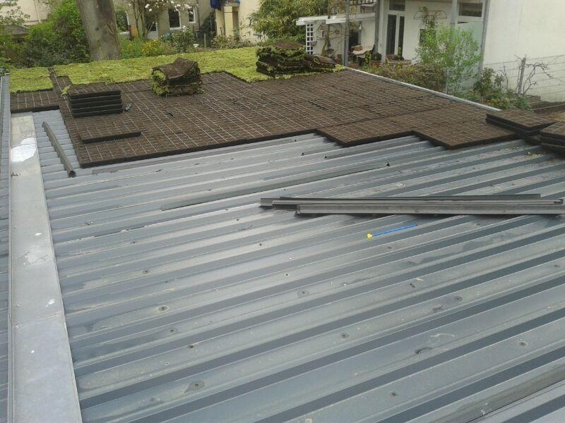 Trapezblechdach Dachbegrunungtotal Trapezblech Dach Dach Dachgarten